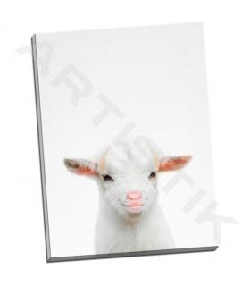 Baby Goat - Tai Prints
