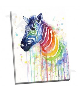 Rainbow Zebra - Shvartsur, Olga