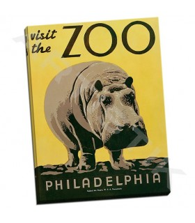 Visit the Zoo - Unknown