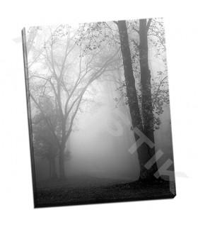 November Fog - Bell, Nicholas