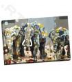 Sumatran Elephants - Freda, Britt
