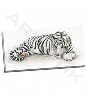 Siberian Tiger - Henderson, Jan