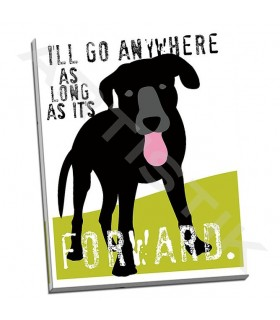 Ill Go Anywhere - Oliphant, Ginger