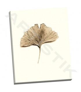 Ginkgo Leaf - Blaustein, Alan