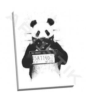 Bad Panda - Solti, Balazs
