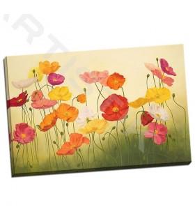 Sunlit Poppies - Kroner, Janelle