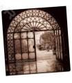 Venezia Italia - Blaustein, Alan